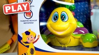 РАСПАКОВКА - Игрушка Пирамидка Черепашка для Малышей - КУКУТИКИ PLAY