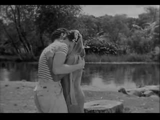 Subida al Cielo /  Mexican Bus Ride - Luis Buñuel (1951)