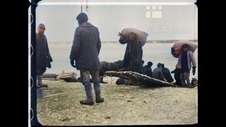 Кинонеделя № 28. . Псков освобожден от немцев