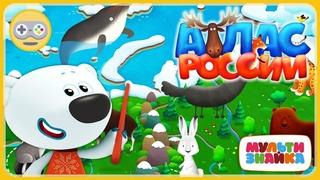 Атлас Животные России - Про животных для детей * мультик игра Мультизнайка