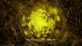 Tronix DJ Vs Basslouder ft. Damian Pipes - Forever Young (Basslouder Edit)
