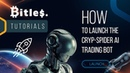How To Launch The Cryp Spider AI Trading Bot