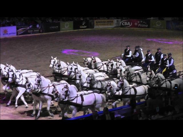 OTP Lovas Világkupa 2012 Hatosfogat karüsszel