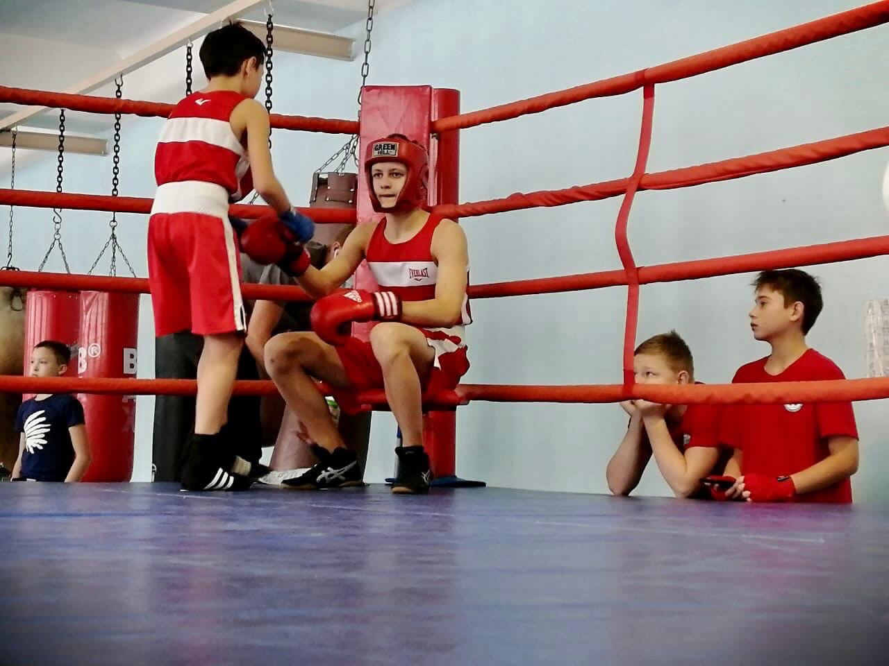 Юные боксёры проверили свои силы на ринге На