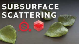 Adding Subsurface Scattering To An Asset using Substance Painter and Redshift