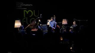 """Petros Klampanis Trio - """"Minor Dispute""""  @ musig im pflegidach, Muri"""