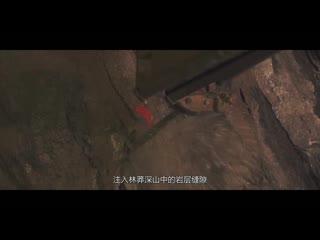 Видео ракетных войск НОАК 2021 года