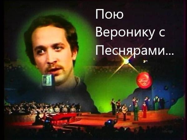 Поющий музыкант на свадьбу - поет песни Песняров... Вераника звучит для вас