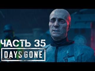 Секретная концовка НЕРО и задел на будущее #35 | Days Gone (Жизнь после)