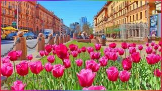 Beautiful spring Minsk!!! - Красивый весенний Минск!!!