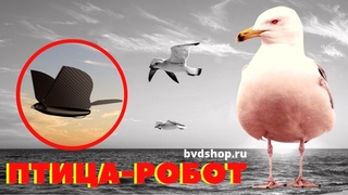 Робот птица Bionic bird