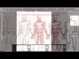 SakimiChan ART  term 31 - frontal_muscle_voice over tutorial