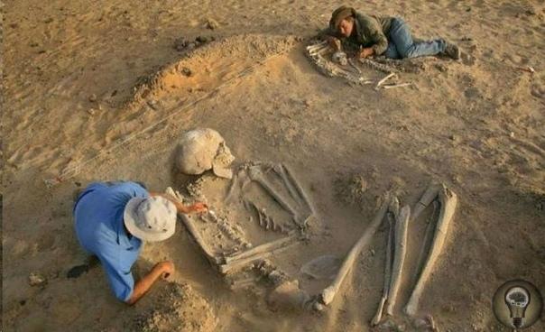 Скелеты гигантов, найденные на территории СССР