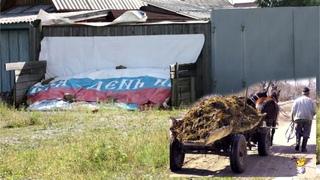 Не валежником единым: Госдума России озаботилась навозом