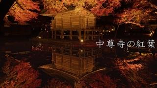 【世界遺産】平泉中尊寺の紅葉 : 【World Heritage】The Autumn Leaves of Chūson-ji Temple(Iwate, Japan)