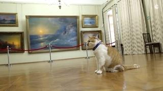 Кот Мостик узнал семейную легенду Ивана Айвазовского  - видео