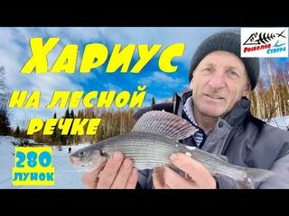 Рыбалка на хариуса зимой 2021. Хариус на таёжной речке. Рыбалка на хариуса в глубинке Арх. области