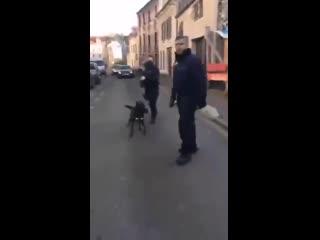 Les jeunes racisés sont terrorisés par la police raciste, comme le prouve cette vidéo