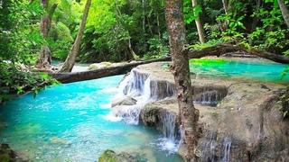 Waterfall & Jungle Sounds, Beautiful Nature Sounds, Relaxing, Sleep, Meditation, Healing, Study