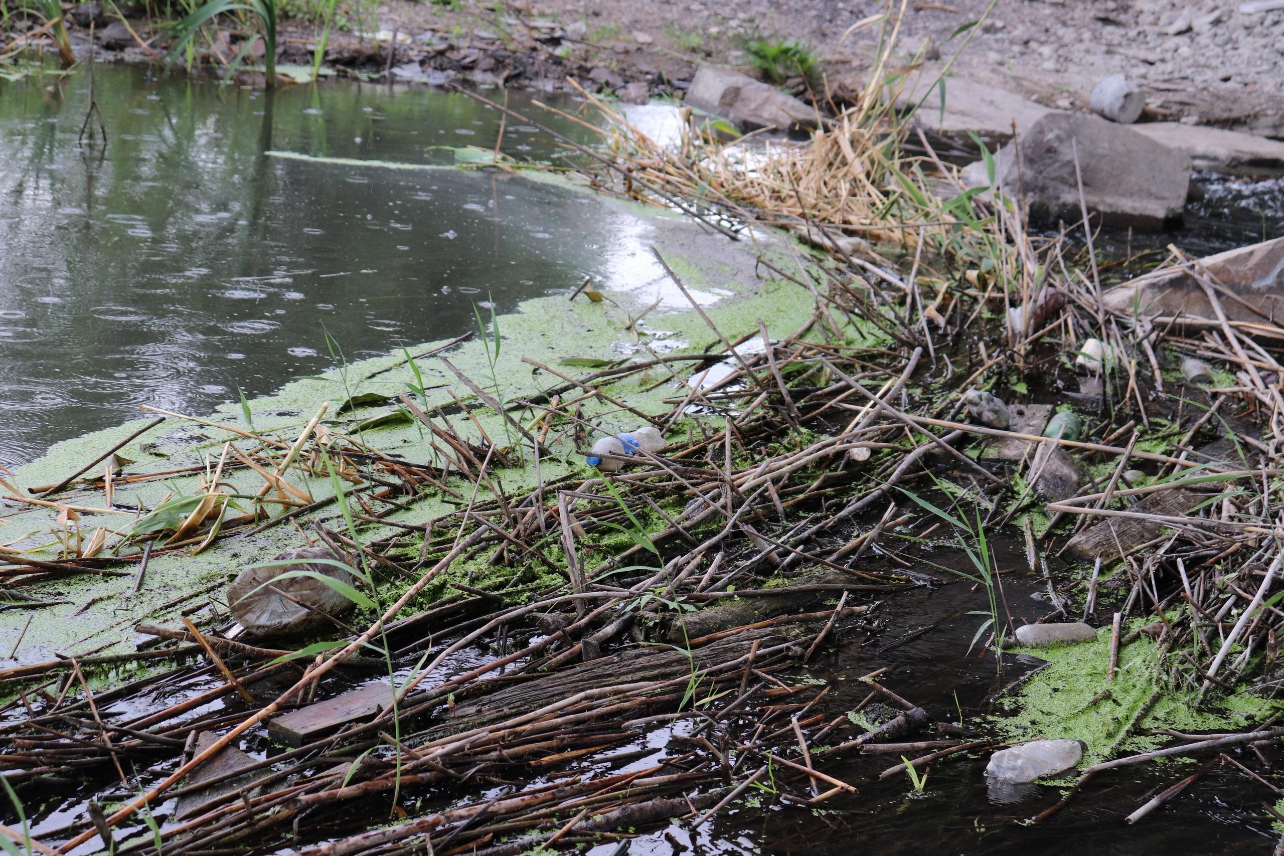 Жители Красносулинского района составили петицию, в которой просят спасти реку Кундрючью