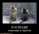 Фотоальбом Василисы Черской