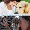 """КП """"Центр обращения с животными"""""""