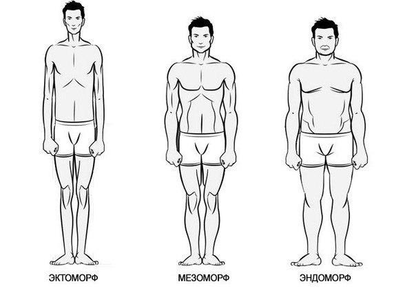 Így tartsd formában a 3 férfi testalkat típus mindegyikét!   feketebaranypanzio.hu Online férfimagazin