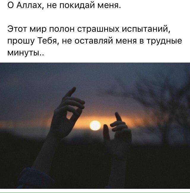 Аркадий высоцкий сын владимира высоцкого фото перчатки