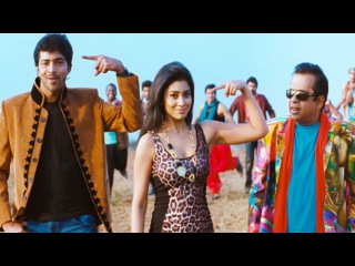 Nuvva Nena Songs - Blackberry - Shriya Saran,  Allari Naresh,  Sharvanand - HD