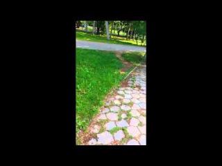 Я катаюсь! У парня отжали видеокамеру в парке.
