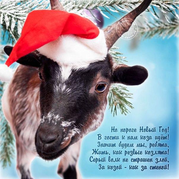 Поздравление в год козла