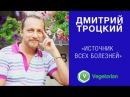 Дмитрий Троцкий - Источник всех болезней
