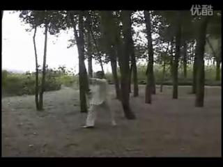 Wángshǎowǔ xiānshēng yǎnliàn de shàolín wǔshù qìxiè—shuāngshǒu dài