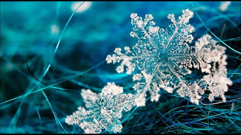 Обои На Телефон Красивые Зима Снежинки
