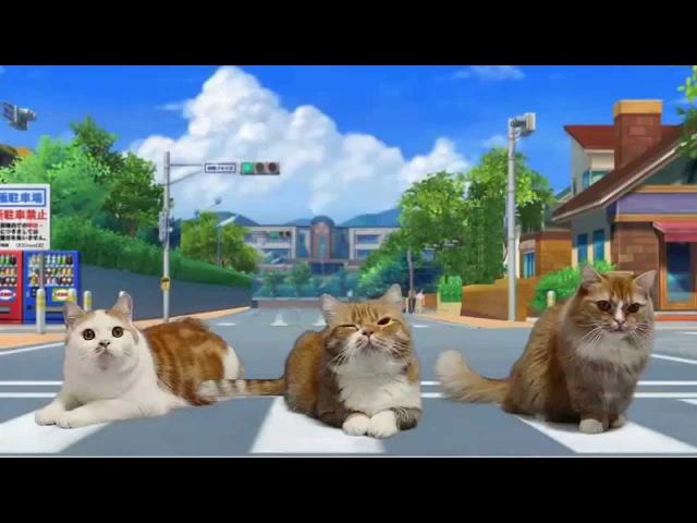 マンチカンズ ようかい体操第一 踊ってみた猫たち ~ YO Kai Watch with cats ~
