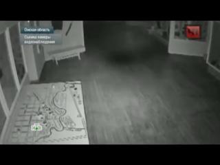 Призрак из Тарского музея попал на видео. Полная версия видео НТВ. (Подслушано в Таре)