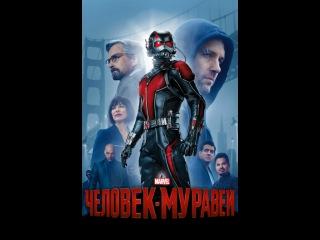 «Человек-Муравей» (Ant-Man, 2015) смотреть онлайн в хорошем качестве HD