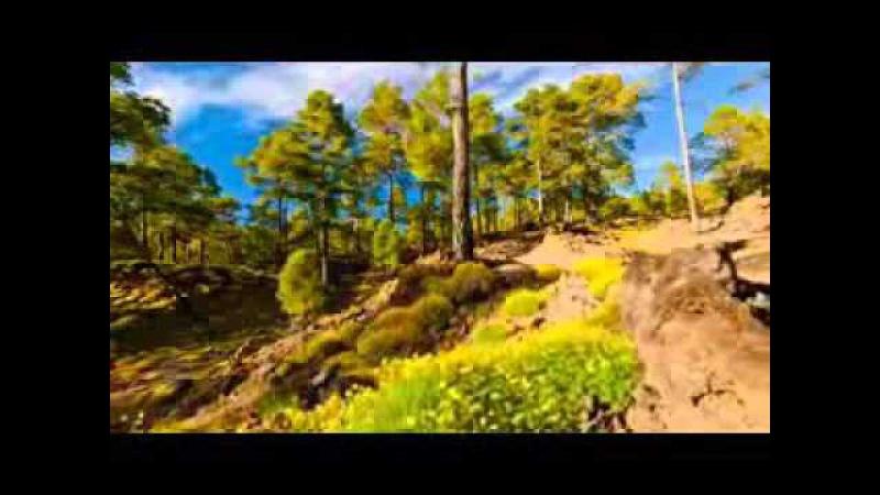 Rolf Lovland Song from a Secret Garden 325