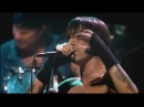 Red Hot Chili Peppers - Don't Forget Me - Live at Olympia, Paris