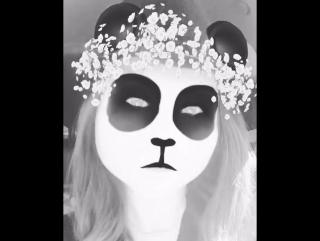 Malese jow on instagram #panda
