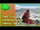 Та самая знаменитая тибетская гормональная гимнастика - 5 минут для здоровья!