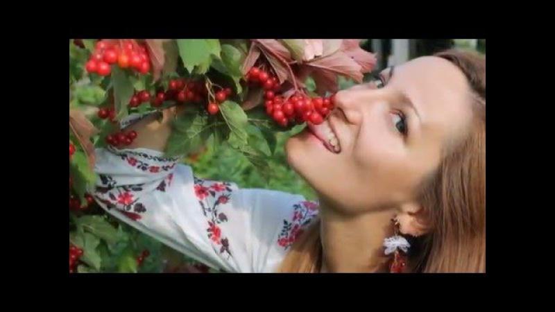 🇺🇦 Українські весільні пісні