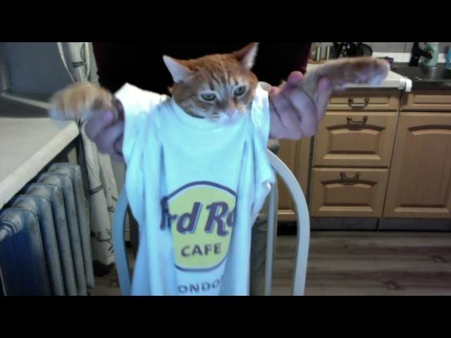 Дима Батурин - AirGuitar - Rock Cat