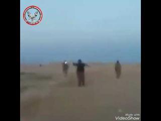 Встреча иракских ополченцев и сирийских  проправительственных сил на юго-востокии провинции Хомс близ иракской границы.