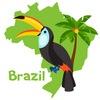 L.A. Vida Loca. Бразилия. Путешествия
