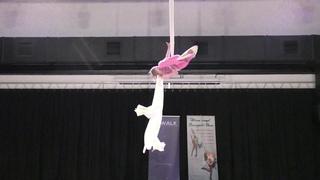 Софья Устимова - Catwalk Dance Fest [pole dance, aerial]  .