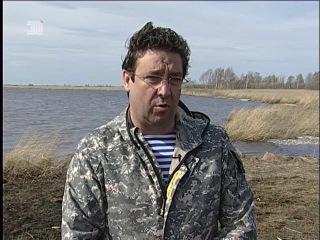В массовой гибели рыб на озере Кунашак южноуральцы подозревают арендатора водоема