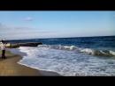 пляж отрада в одессе , ноябрь