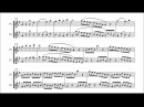 Ludwig van Beethoven Duo for two flutes WoO 26 VIDEO REQUEST