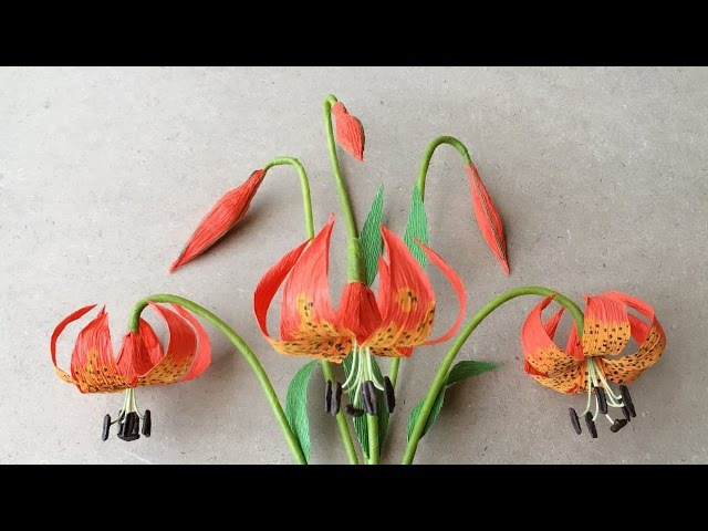 ABC TV How To Make Michigan Lily Paper Flower From Crepe Paper Craft Tutorial